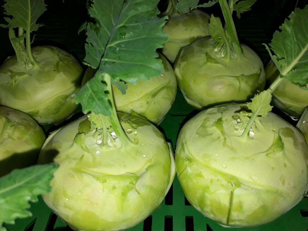 Imhof Gemüse